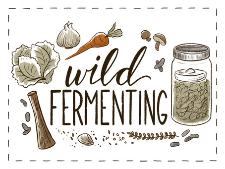 Get Started with Wild Fermenting