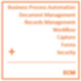 Electronic Content Management