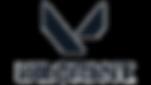 Valorant_logo (1) (1).png