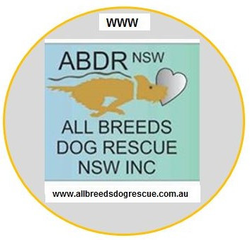 OUR VOLUNTEERS & SUPPORTERS | Dogs | Australia | All Breeds Dog Rescue