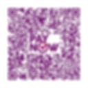 qrcode201326118D (1).png