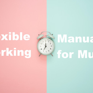 Flexible Working: Manual for Mums