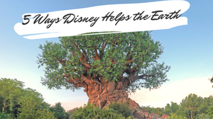 Happy Earth Day! 5 Ways Disney is Helping Our Planet
