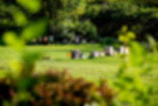 cicmessnerbeefarm6.jpg