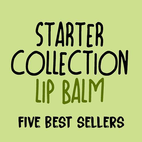 Lip Balm Starter Pack, 5 Boxes of 12  (wholesale $2.50 ea, retail $5.00 ea)