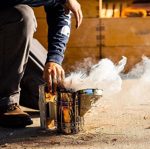 A beekeeper's smoker produces cool smoke