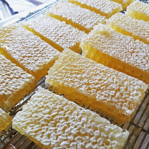 HONEYCOMB! We're packaging some gorgeous