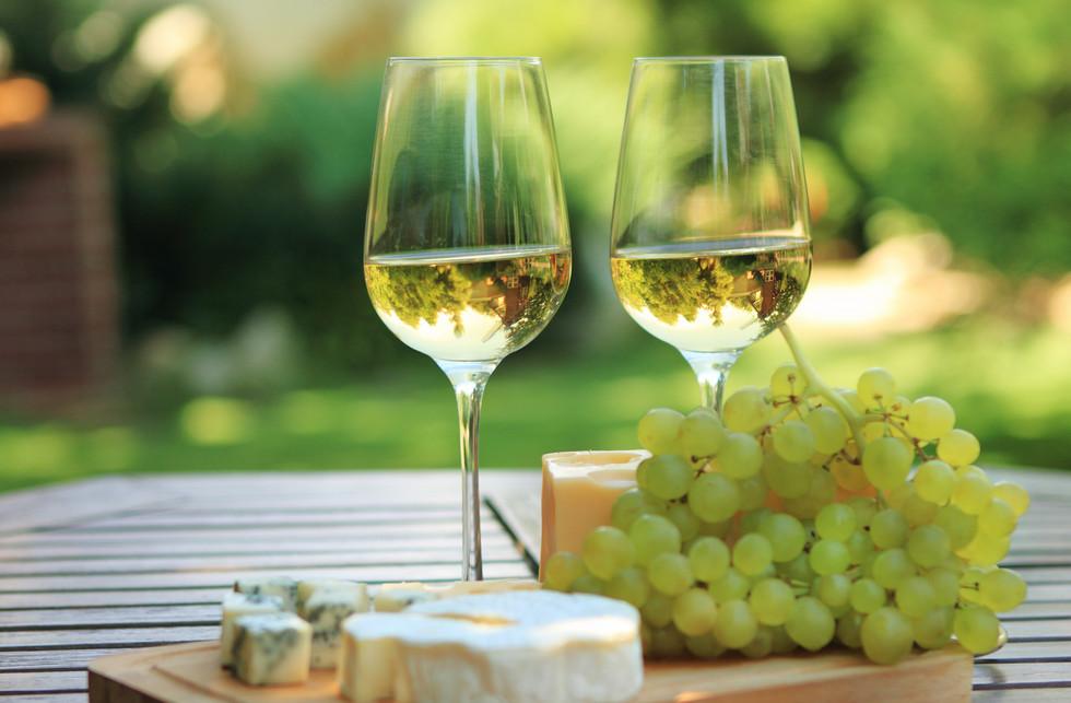 世界のワイン.jpg