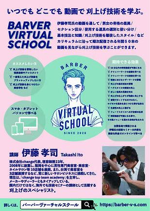 BVS2.jpg