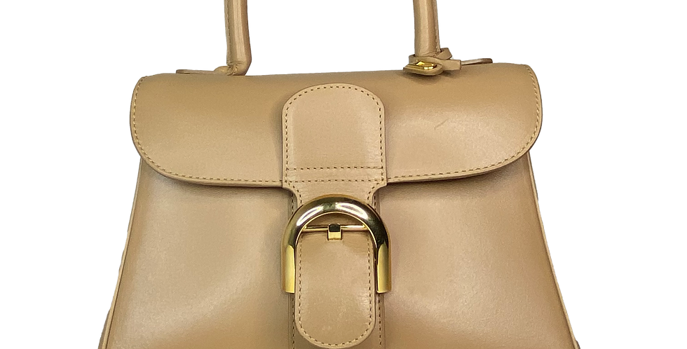 Delvaux Brillant PM beige