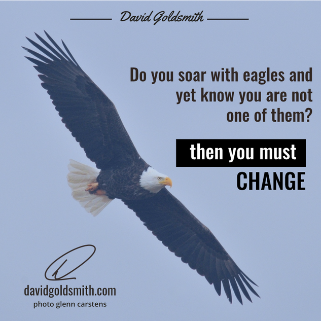 00043 INSTA Soar with Eagles.png