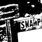 swampcover.jpg