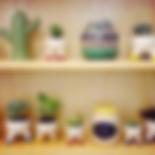 Vasos Paz! design, Paz! design, macetas, colección Raiz, Raiz collection, Coleção Raiz, vasos ceramica, Collector 55, Collector, São Paulo