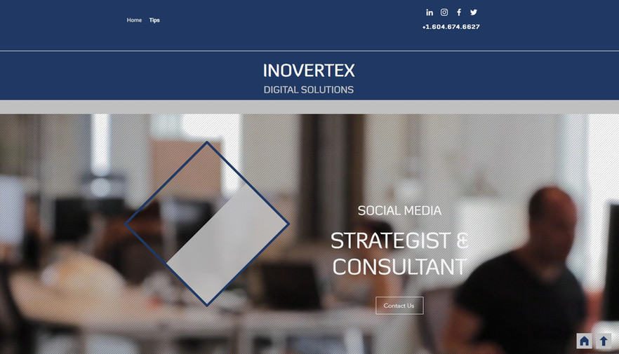 INOVERTEX Website