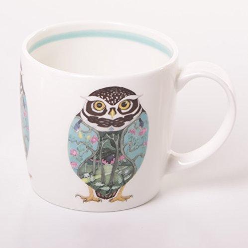 Hudson & Middleton DM Collection - Little Owl