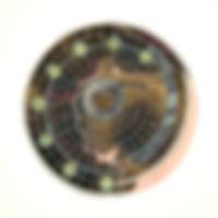 Skymap Microbe 300dpi 2.jpg