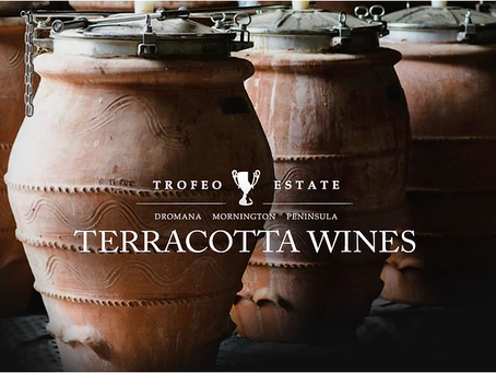 Everything Old is New Again: Amphorae Wine at Trofeo Estate