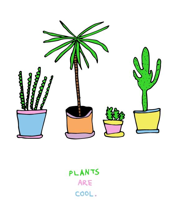 Plants Are Cool / 2014