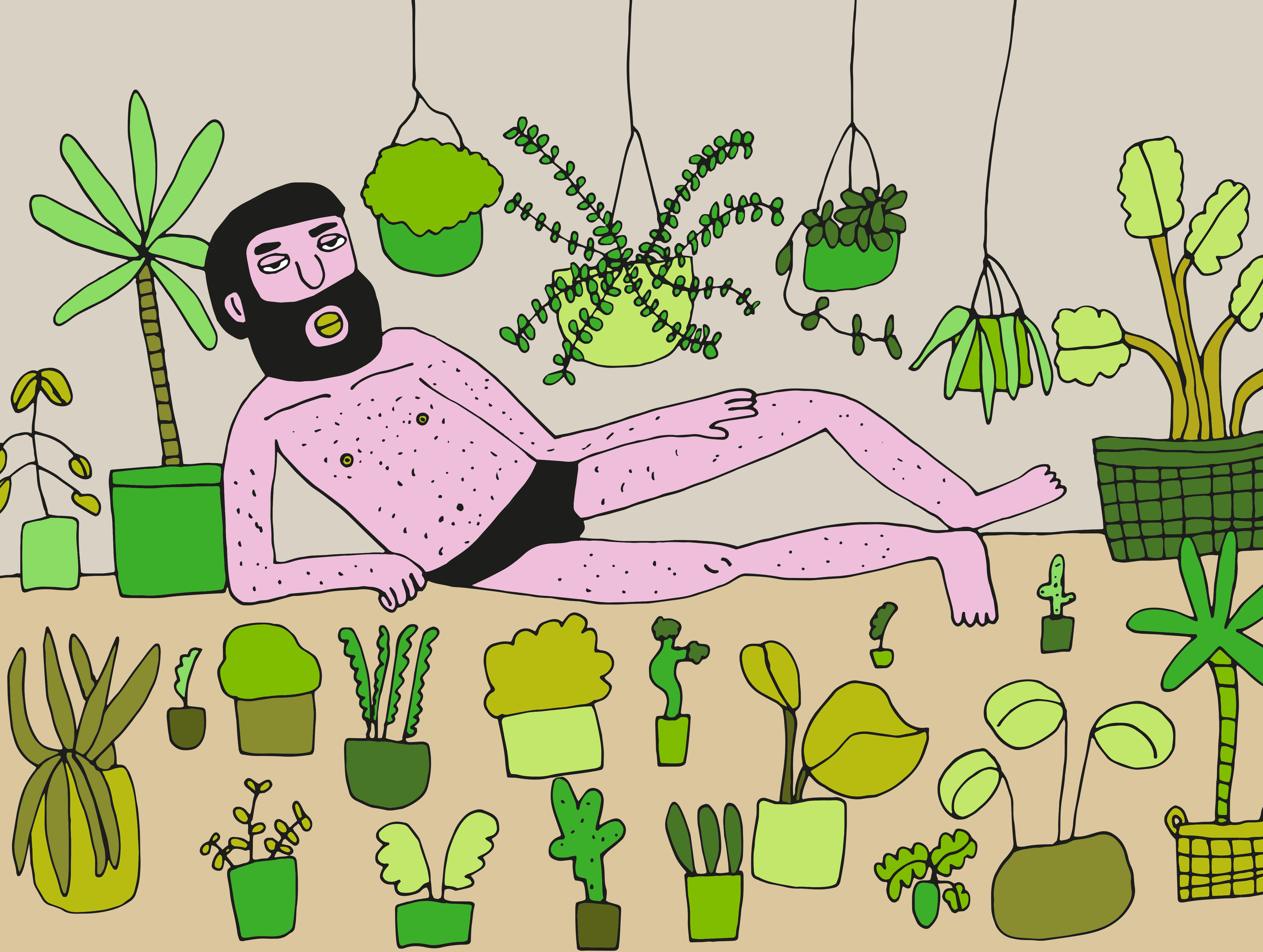 Mr Plant / 2017