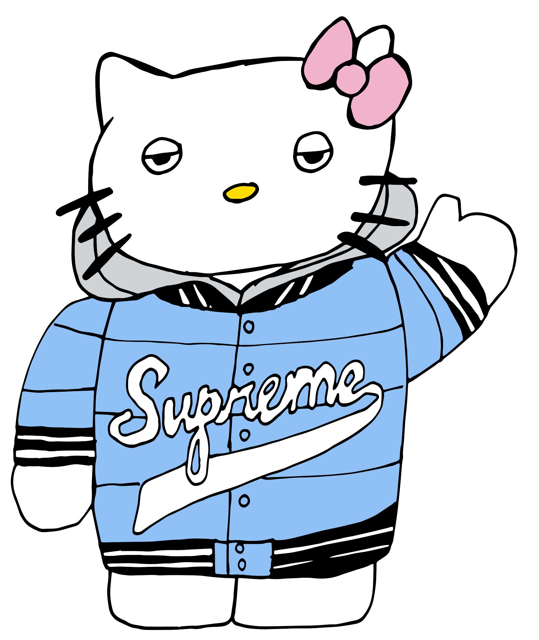 Supreme Kitty / 2016