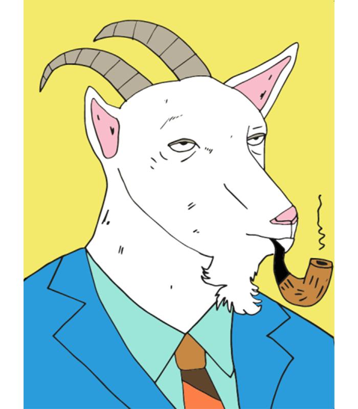 Classy Goat  / 2014