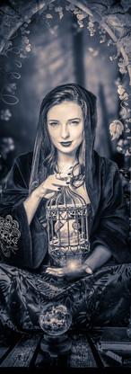 Dark Heart's Queen 2.jpg
