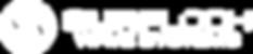 SurfLoch_WaveSystems®_Logo_Horizontal_W