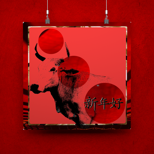 Lunar New Year- Year of the Ox