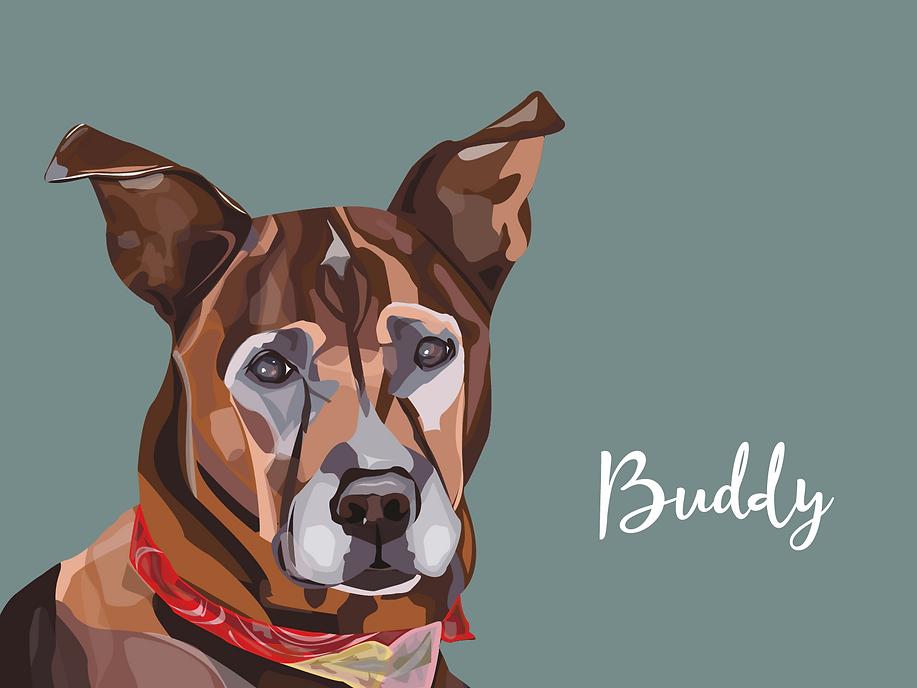 BUDDY ADJUSTED-01.png