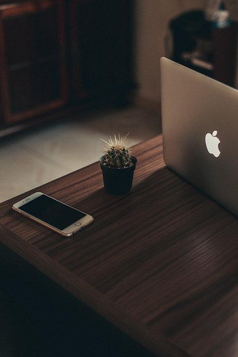 business-cactus-computer-2047895.jpg