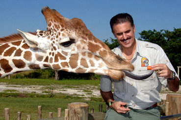 Ron Feeding Giraffe