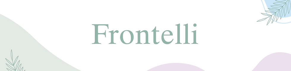 Banner-frontelli.png