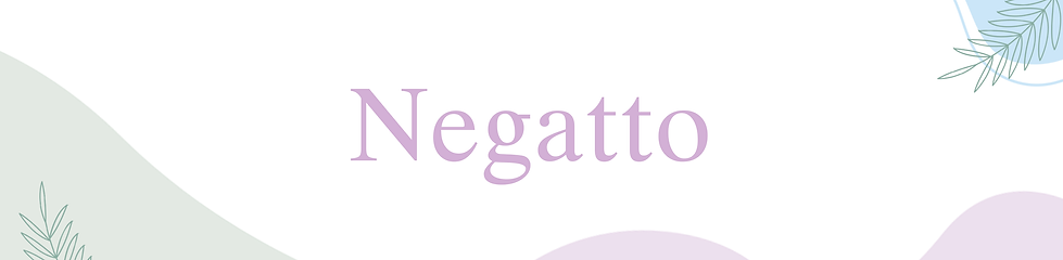 Banner-negatto.png