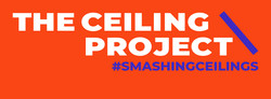 The Ceiling Project