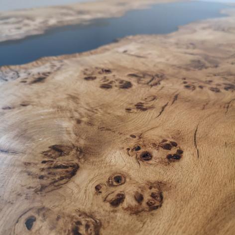 Beautiful burr oak