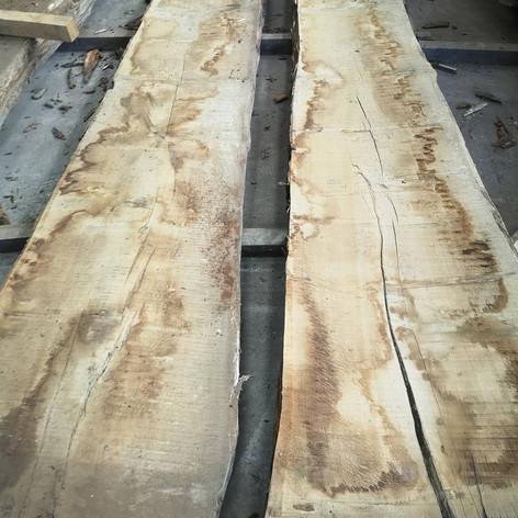 2 very large oak slabs