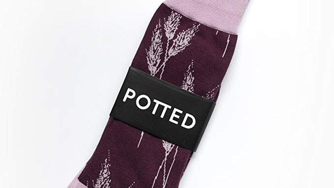 Purple Haze Socks