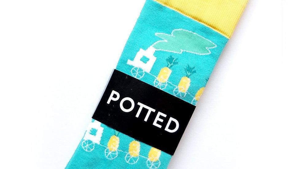 Pineapple Express Socks