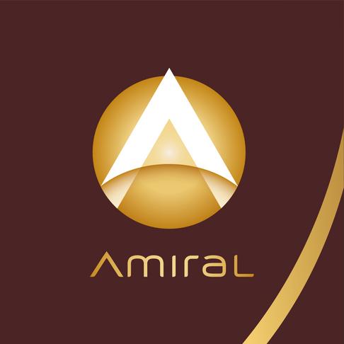 AMIRAL PEINTURE
