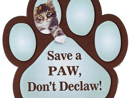 Save a Paw, Don't Declaw