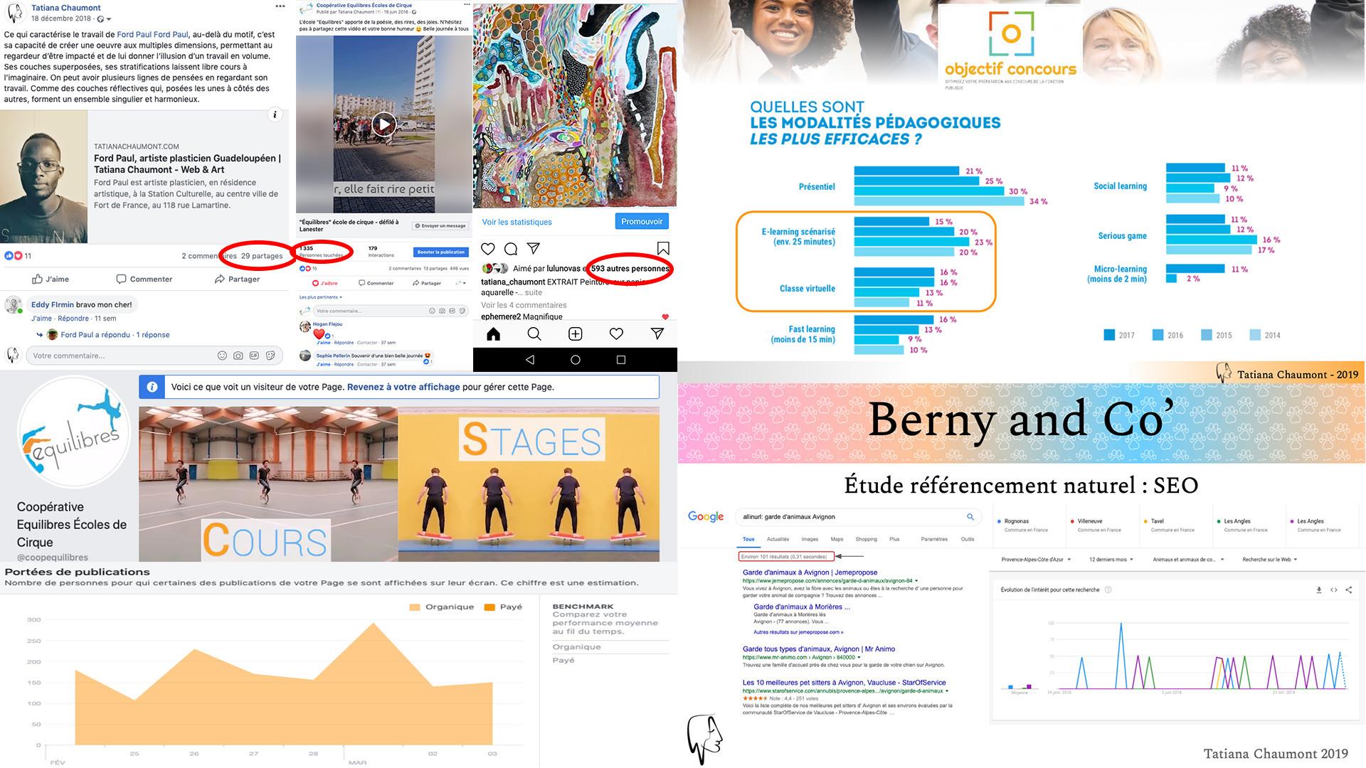 Tatiana Chaumont - Web, Art & Bio - Support & etude webmarketing SEO réseaux sociaux