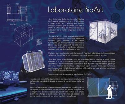 Création d'affiche Web, Art & Bio