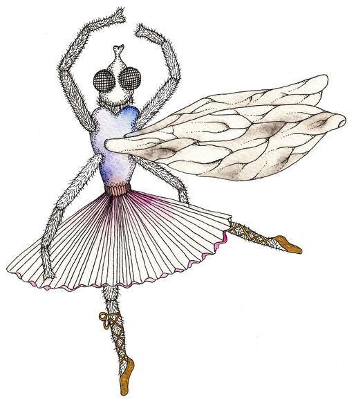 La mouche danseuse étoile