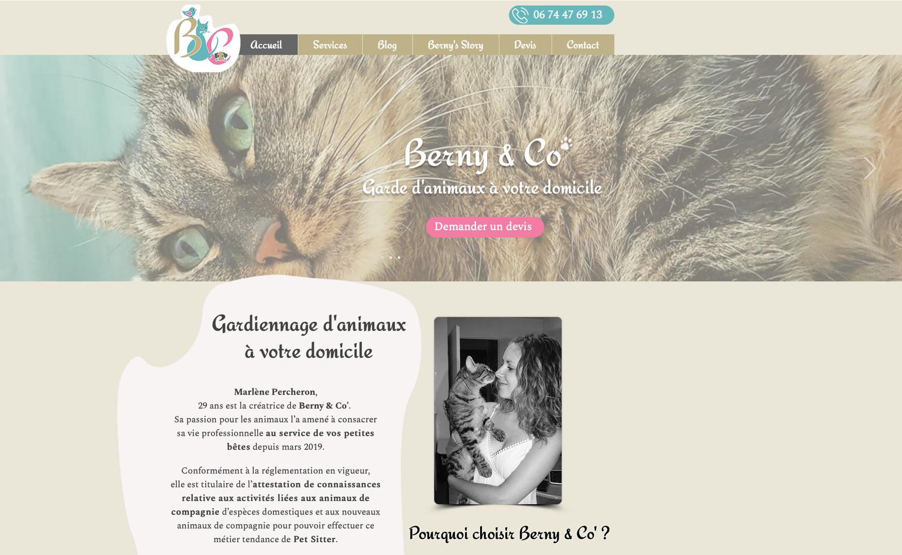 pictogram :Tatiana Chaumont - Web,art & bio - creation du site web bernyandco.com