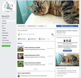 Création page Pro et formation à l'usage de Facebook Web, Art & Bio