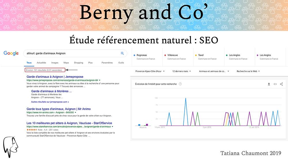 Extrait étude et analyse SEO référencement naturel Berny & co' réalisé par Tatiana Chaumont Web, Art & Bio , Chef de projet Web