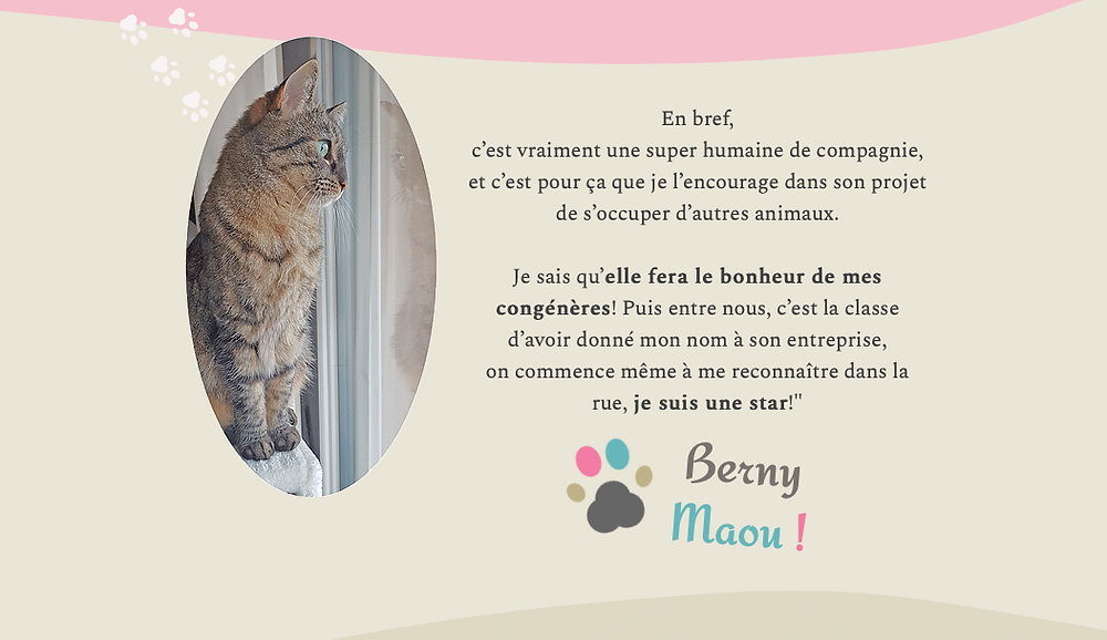 extrait page story de Berny & Co' - Identité visuelle : Tatiana Chaumont - Web, Art & Bio