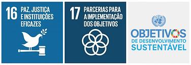 objectivos de desenvolvimento das nações unidas, 16 a 17