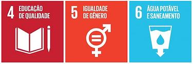 objectivos de desenvolvimento sustentável das nações unidas, 4 a 6