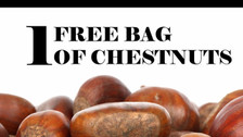 Join us at the Chestnut Festival